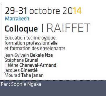 La formation professionnelle des enseignants d'éducation scientifique, technologique et professionnelle par Sophie Ngaka