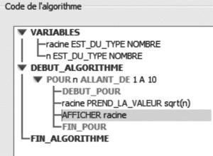 Figure 4 : Saisie de l'algorithme avec Algobox