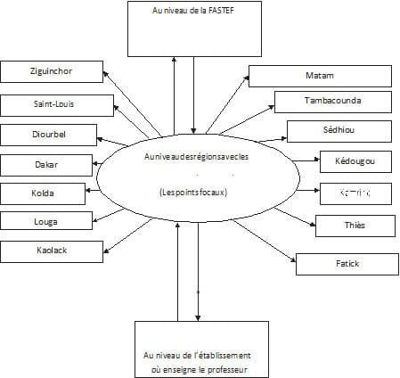 Schéma : Les différents niveaux de la formation à distance