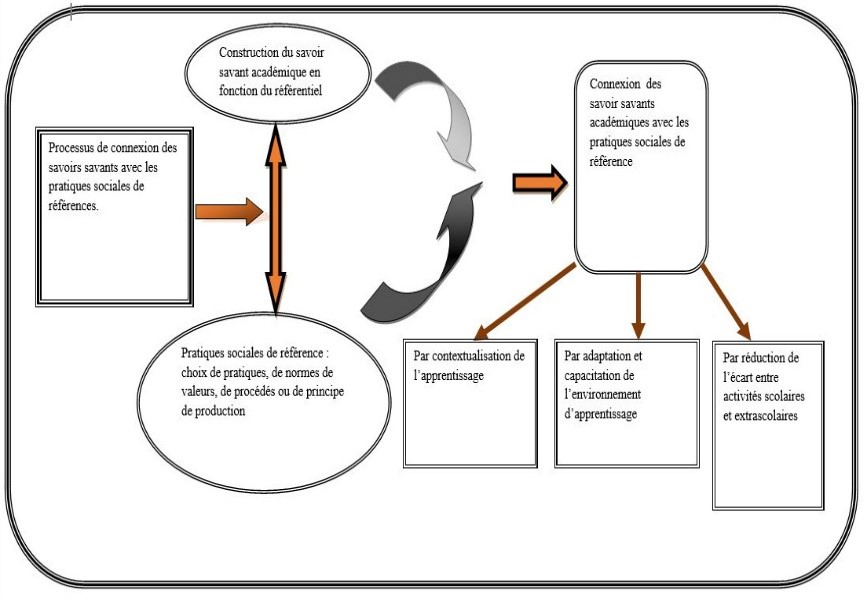 Figure 5 : Connexion des savoirs
