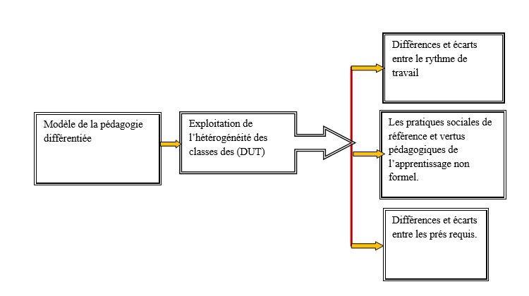 Figure 4 : Présentation du modèle didactique de la pédagogie différentiée dans la mise en œuvre de l'hétérogénéité en classe de DUT