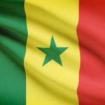 Illustration du profil de Administrateur SENEGAL