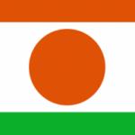 Logo du groupe NIGER